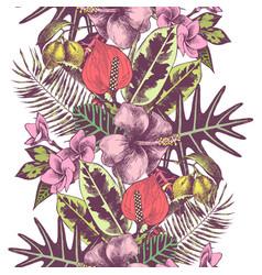 tropical summer hand drawn seamless border vector image vector image