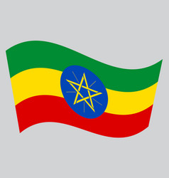 flag of ethiopia waving on gray background vector image