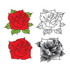 Flower rose isolated on white background vector