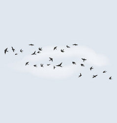 Flying birds silhouette flock black marine vector