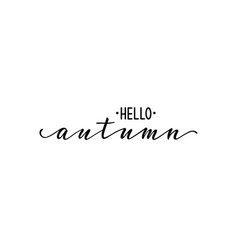 Hello autumn hand drawn calligraphy and brush pen vector