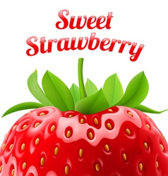 Poster sweet strawberries vector image
