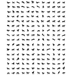 Set of horses silhouettes vector