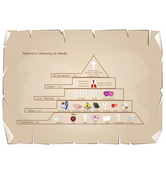 hierarchy of needs diagram of human motivation on vector image