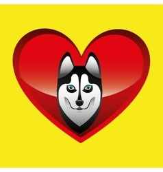 siberian husky dog face design vector image