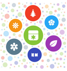 7 ornament icons vector image
