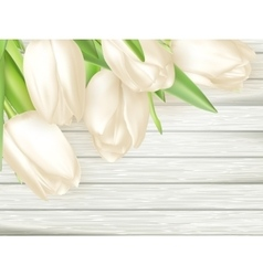bouquet white tulips eps 10 vector image
