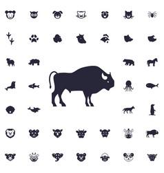 Buffalo icon vector