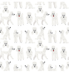 poodle in action seamless pattern vector image
