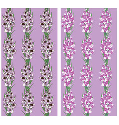 seamless pattern flowers gladiolus purple vector image