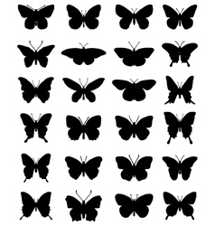 Silhouettes of butterflies 24 vector