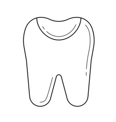 Tooth enamel line icon vector