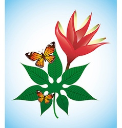 tropical nature vector image