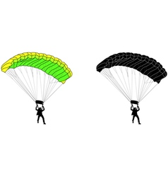 skydiver vector image