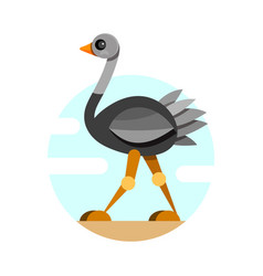 cute ostrich in flat style isolated on white vector image