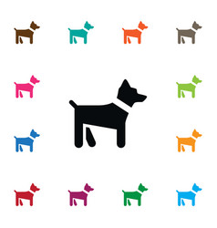 isolated dog icon hound element can be vector image