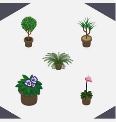 Isometric flower set of flowerpot plant vector
