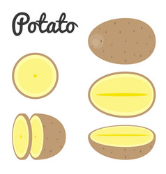 set of potato half and slice potato vector image