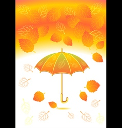 Autumn background with leaves umbrella vector image vector image