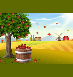 Apple tree and farm landscape at autumn vector