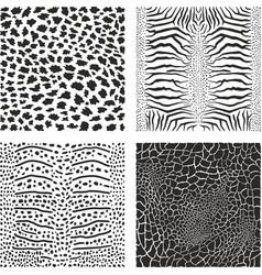 background sea animals vector image