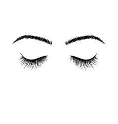 closed eyes black eyelashes false eyelashes vector image