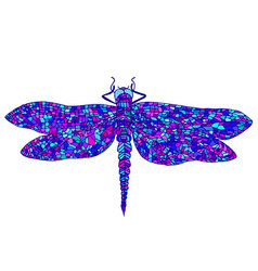 Decorative beautiful graceful dragonfly vector