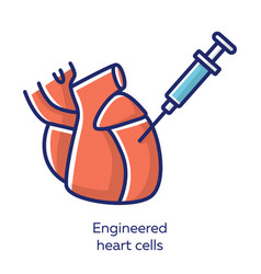 Engineered heart cells red color icon human vector