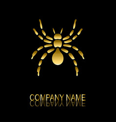 Golden spider symbol vector