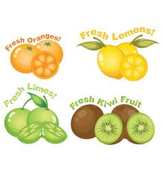 Set citrus fruits vector