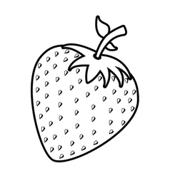 strawberry fruit design over white background vector image