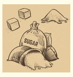 sugar doodles collection sketch vector image
