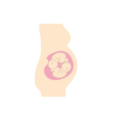 Woman pregnant with nice twins babies vector
