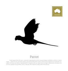 black silhouette of a parrot on a white background vector image vector image
