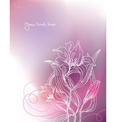 background with lily flowers vector image