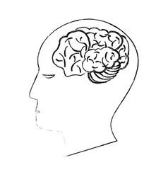 head human brain creativity sketch vector image