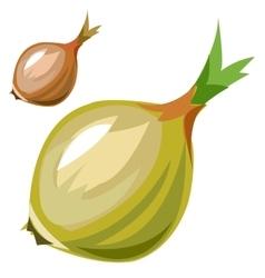 Ripe delicious onion closeup in cartoon style vector image vector image