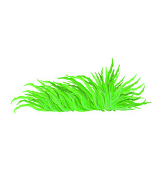 algae symbol icon design beautiful isolated on vector image