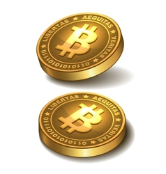 Bitcoins isolated on white vector image vector image