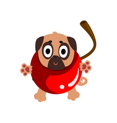 Cute funny pug dog character inside sweet cherry vector