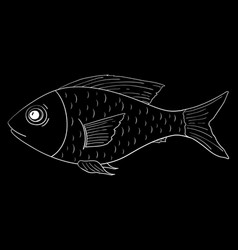 Fish outline doodle on black background vector