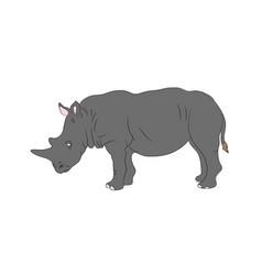 gray rhino worth drawing vector image
