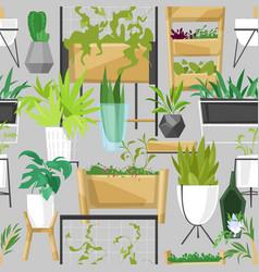 plants in flowerpots potted houseplants vector image