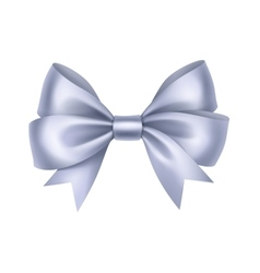 Shiny Light Blue Satin Gift Bow Close up Isolated vector