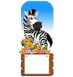 funny zebra cartoon posing with blank board vector image vector image