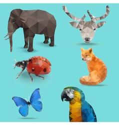 Animal Bug Polygon vector image