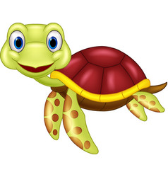 cartoon bacute turtle vector image