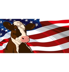 Cow and USA flag vector image