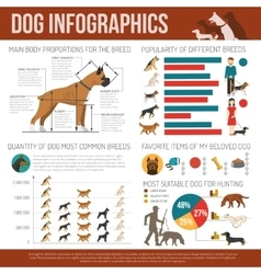Dog infographics set vector image