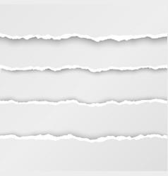 set torn paper stripes paper texture vector image